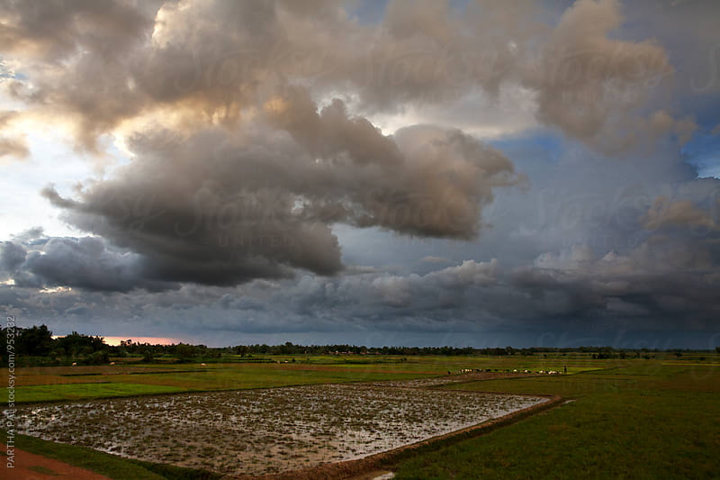Monsoon sky and rural scene by PARTHA PAL for Stocksy United