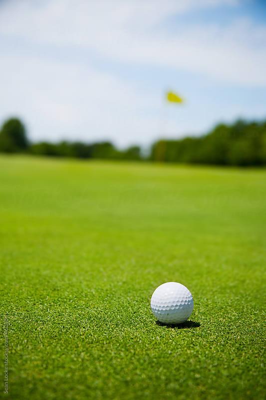 Golf: Golf Ball on Green by Sean Locke for Stocksy United