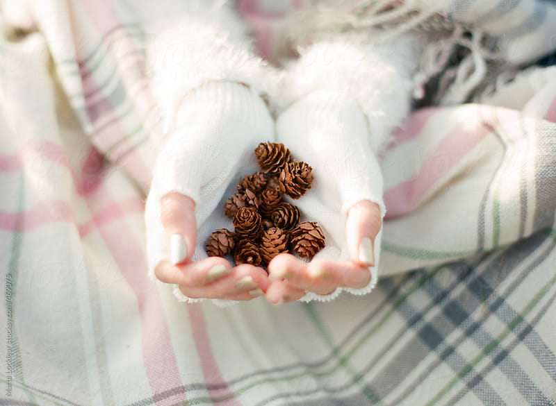 Fingerless gloved hands holding tiny pinecones on a plaid blanket by Marta Locklear for Stocksy United