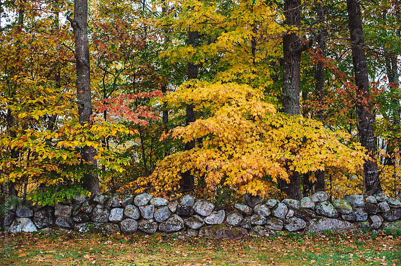 stone wall 1 by Mark Fleming for Stocksy United