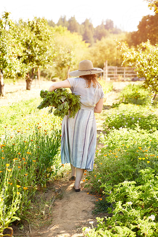 Woman farmer walking carrying organic vegetables on farm by Trinette Reed for Stocksy United