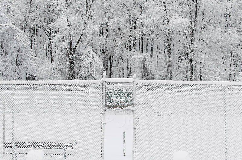 tennis court in the snow by Deirdre Malfatto for Stocksy United