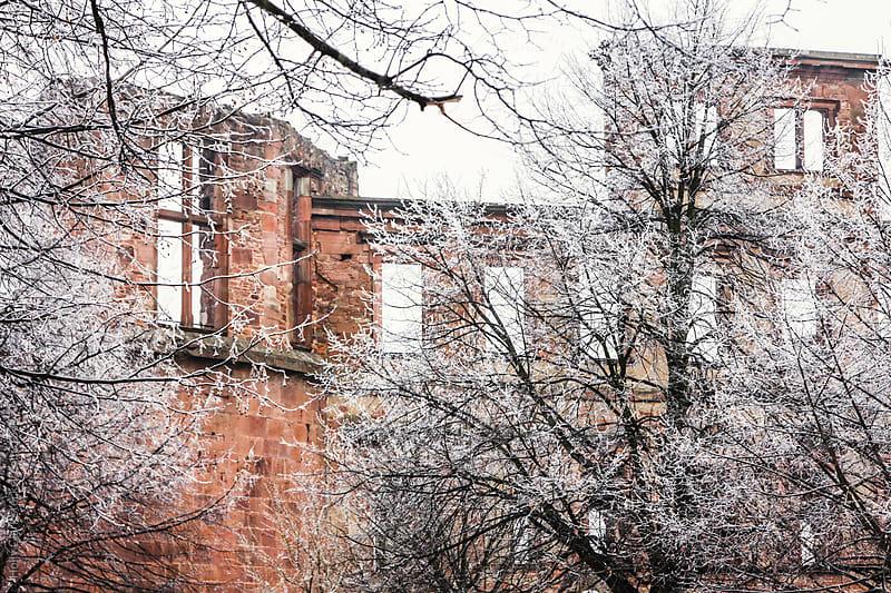 Hidden castle ruins in German winter, Heidelberg, Baden-Württem by Holly Clark for Stocksy United
