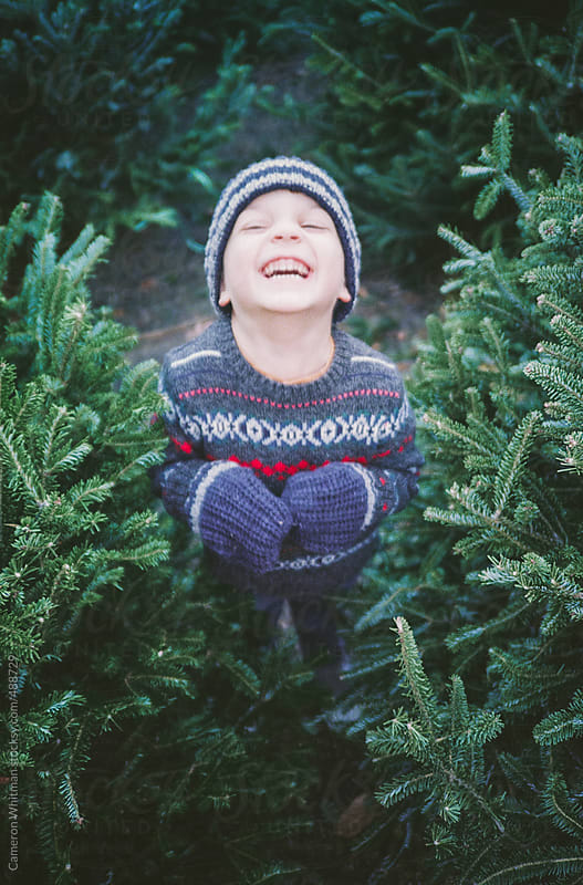 Young Boy Picking Out His Christmas Tree by Cameron Whitman for Stocksy United