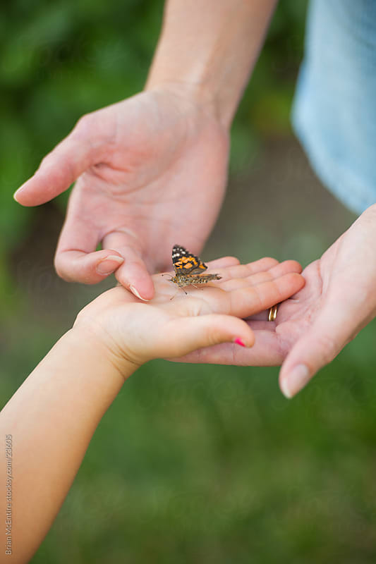 Mother and Daughters Hands Releasing Butterflies by Brian McEntire for Stocksy United