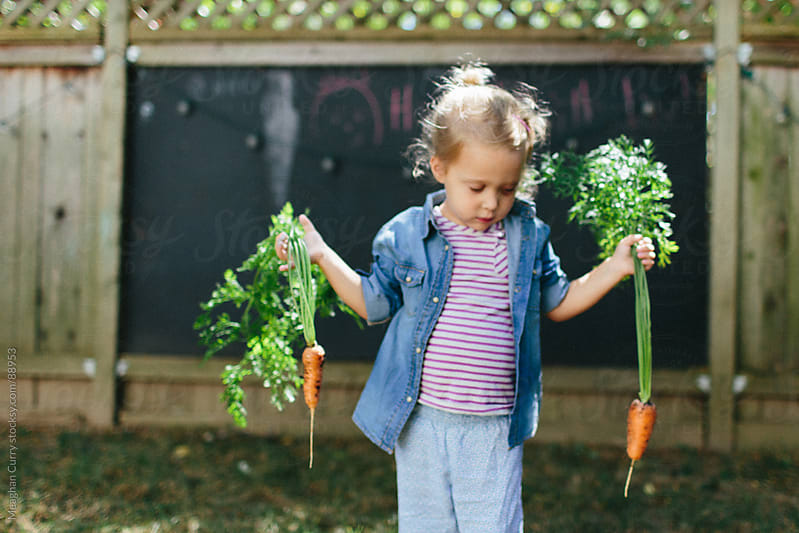 little girl picking carrots from her backyard garden by Meaghan Curry for Stocksy United