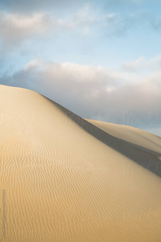 Sand dunes. South Australia. by John White for Stocksy United