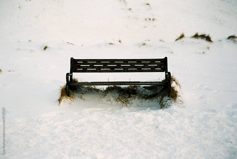 Empty Bench by Sam Burton for Stocksy United