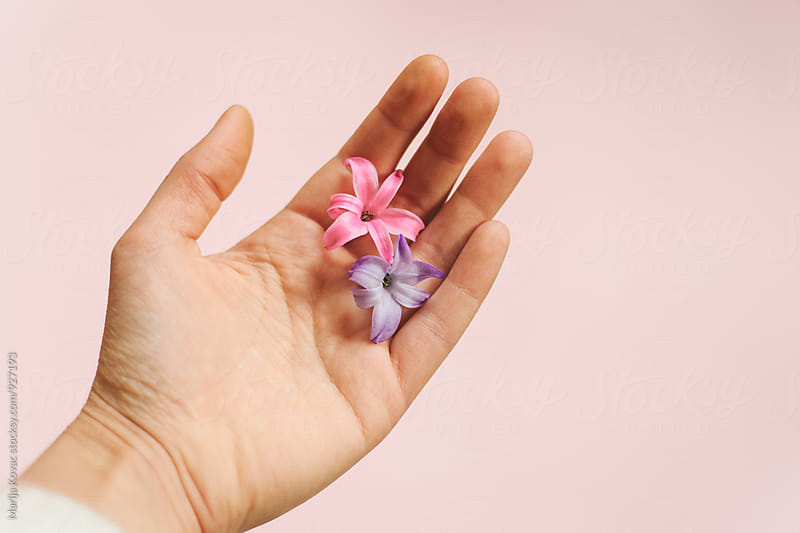 Two flowers in a female hand  by Marija Kovac for Stocksy United