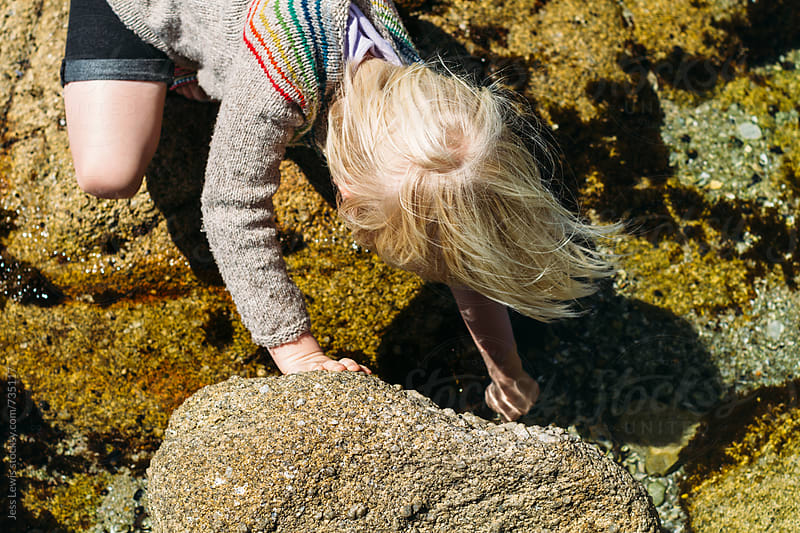 young girl investigating tidepool by Jess Lewis for Stocksy United
