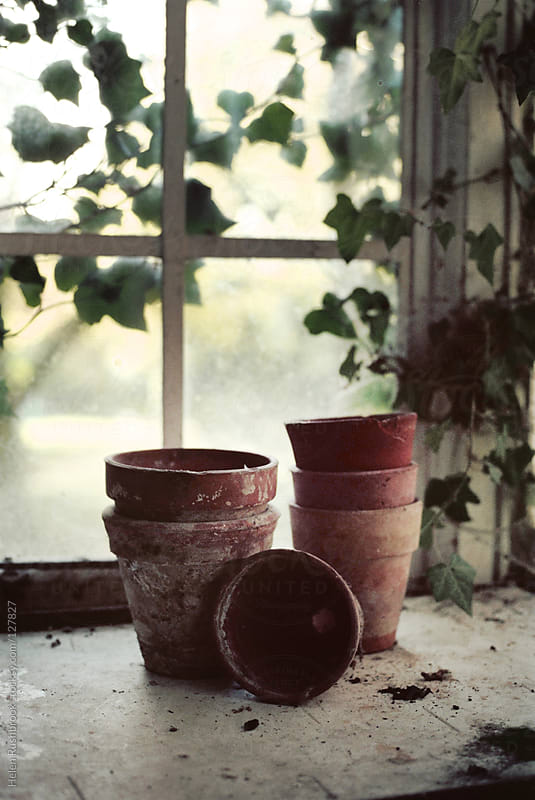 Teracotta Pots on a potting bench by Helen Rushbrook for Stocksy United