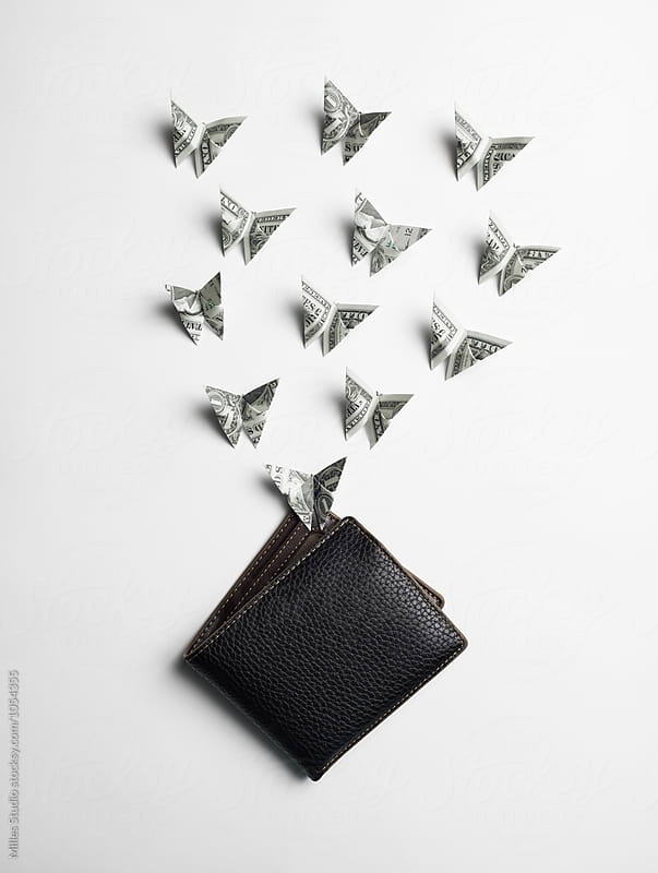 Origami butterfly Dollar by Milles Studio for Stocksy United