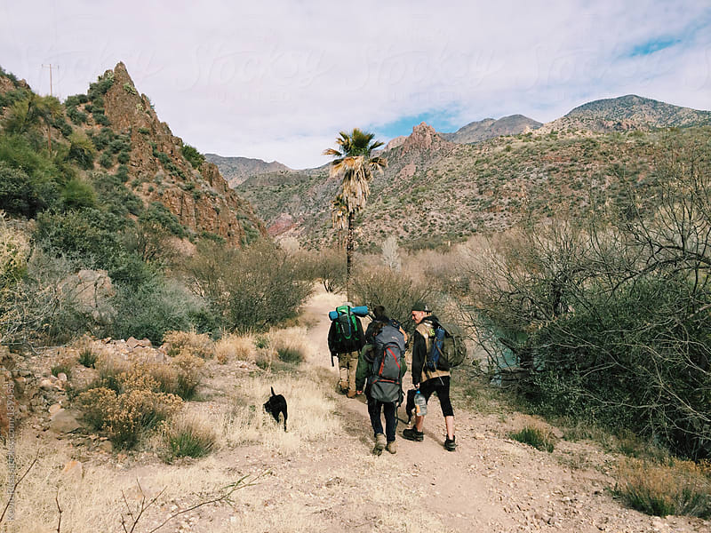 Travelers and Dogs Walk Along Arizona River by Kevin Russ for Stocksy United