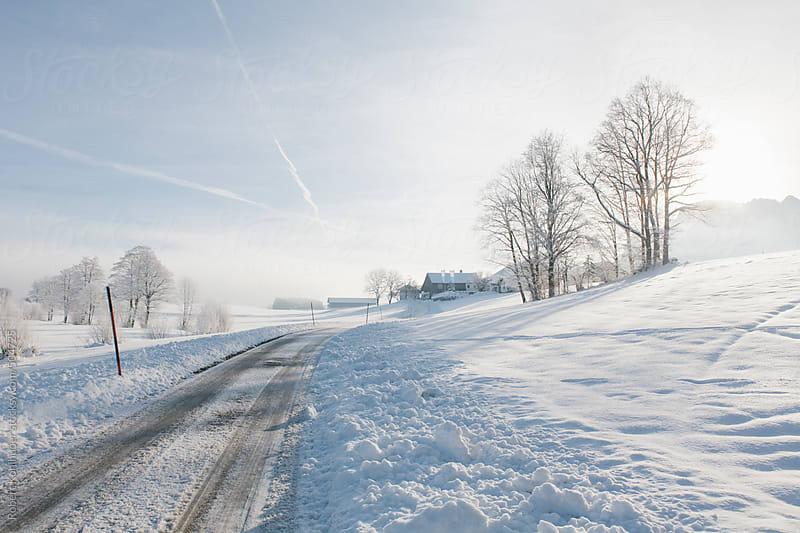 Street in winter landscape in austria by Robert Kohlhuber for Stocksy United