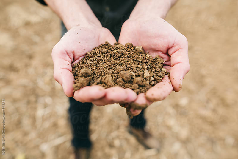 Closeup of a farmer holding soil in his hands.  by BONNINSTUDIO for Stocksy United