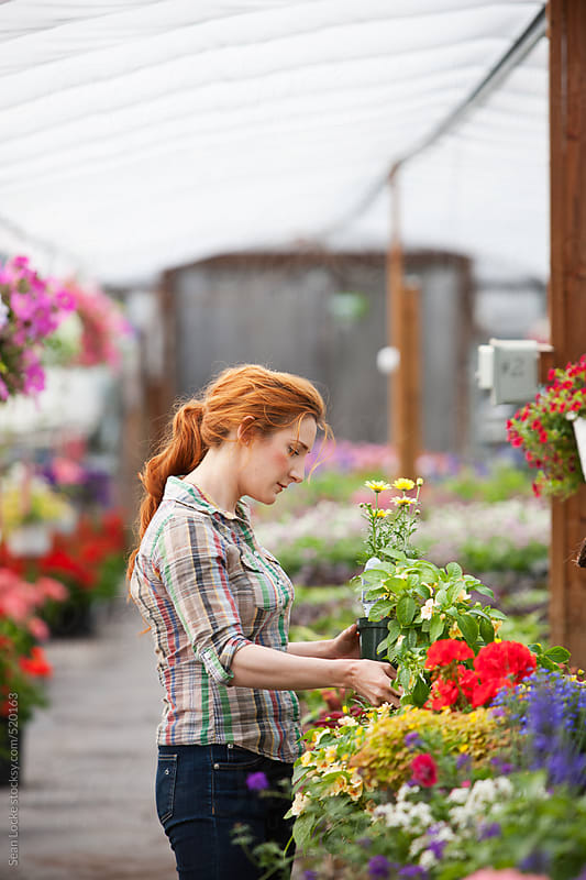Nursery: Female Customer Shops for Flowers by Sean Locke for Stocksy United
