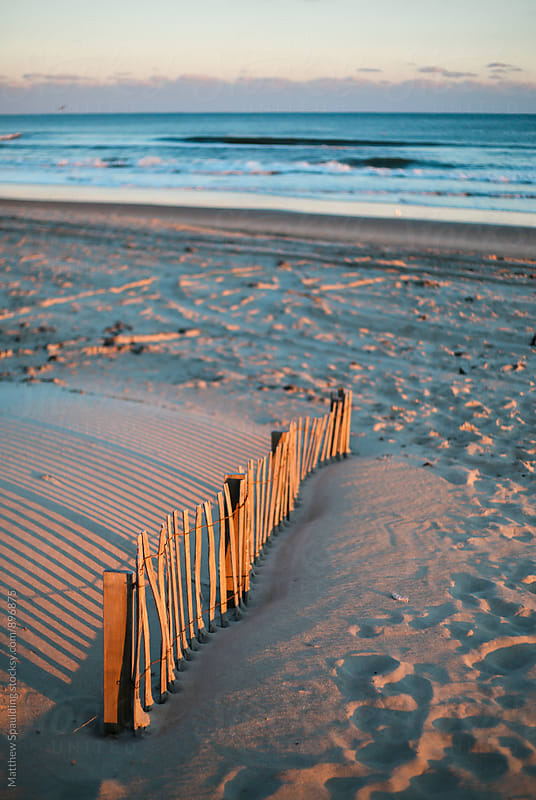 Beach dune fence in summer sunlight by Matthew Spaulding for Stocksy United