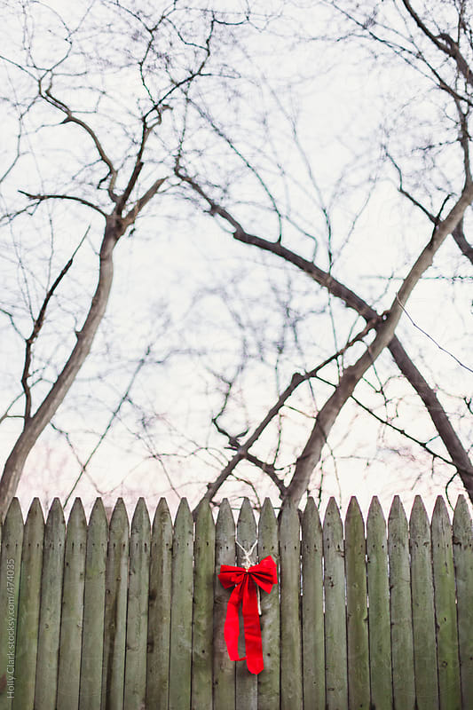 A red bow decorates an old fence at Christmas. by Holly Clark for Stocksy United