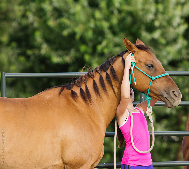 girl puts halter on horse by Tana Teel for Stocksy United