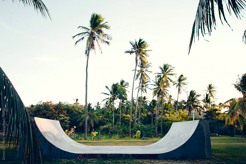 Skate ramp in the jungle by Denni Van Huis for Stocksy United