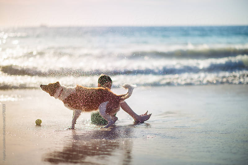 Dog shaking water over a boy at the beach by Angela Lumsden for Stocksy United
