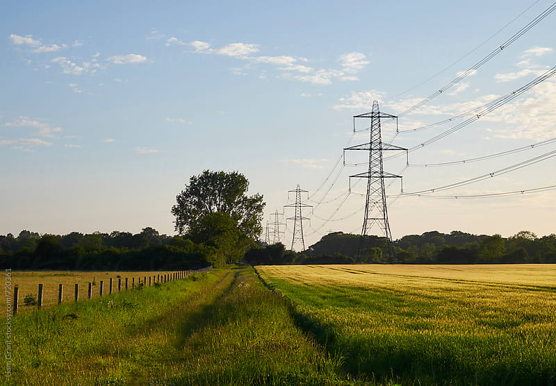 Electricity pylon in evening light. Norfolk, UK. by Liam Grant for Stocksy United