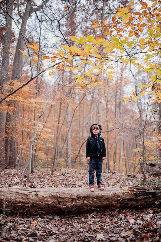 Little Boy Exploring The Woods by Cameron Whitman for Stocksy United