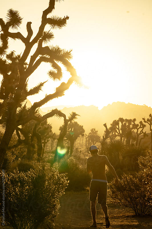 Morning stroll through the desert of Joshua tree by Christian McLeod Photography for Stocksy United