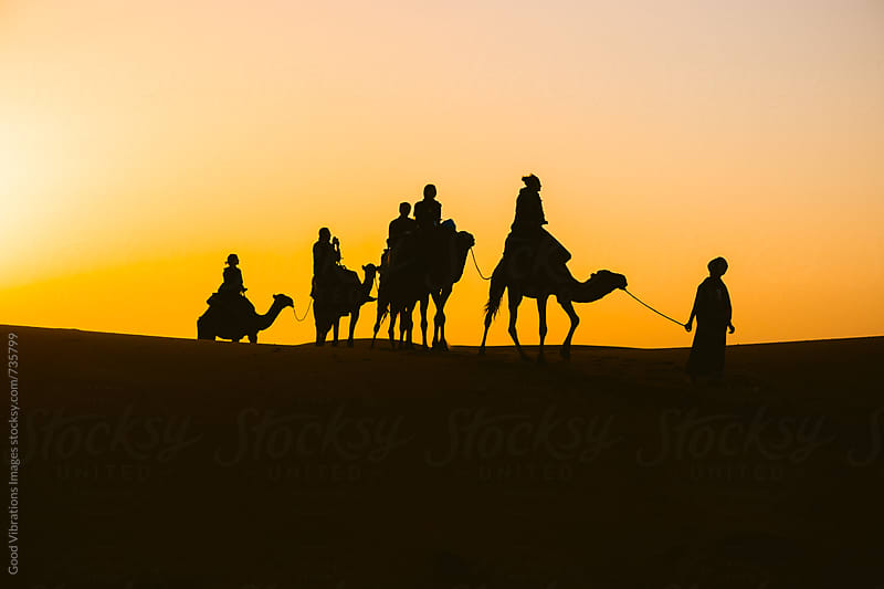 Silhouette of Camel Caravan in Desert at Sunset by Good Vibrations Images for Stocksy United