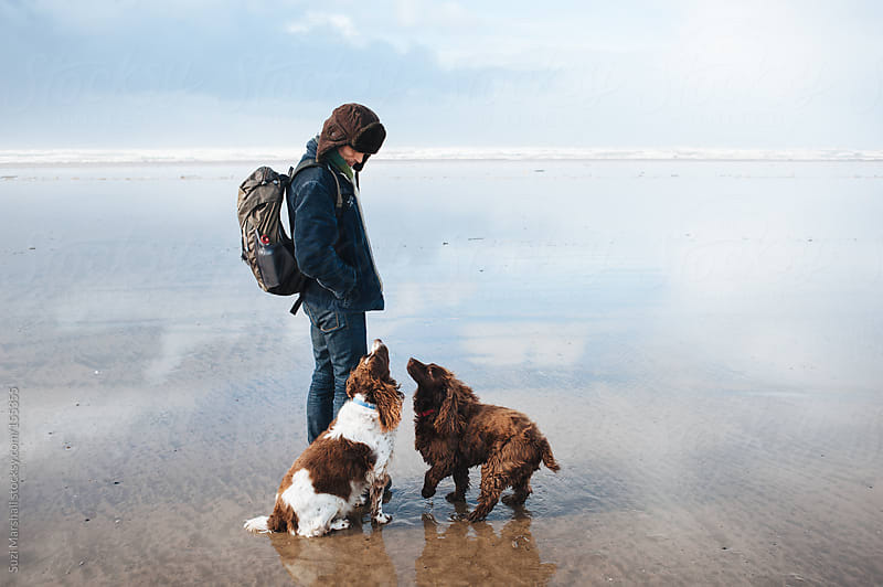Man with his dogs at the beach by Suzi Marshall for Stocksy United