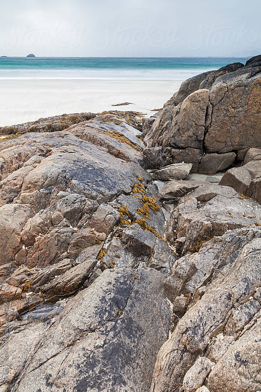 Rocks with traces of seaweed and seashells by Marilar Irastorza for Stocksy United