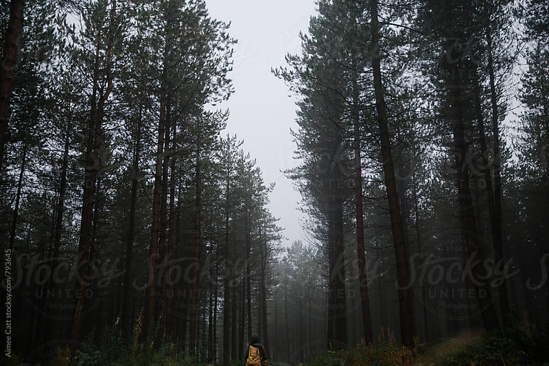 Person wandering through the woods by Aimee Catt for Stocksy United