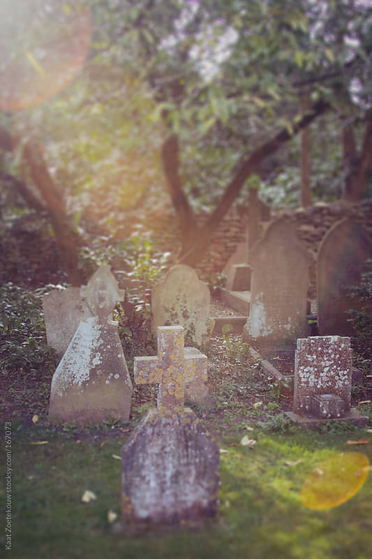 Tilt-shift of a quiet sunlit rural graveyard.  by Kaat Zoetekouw for Stocksy United