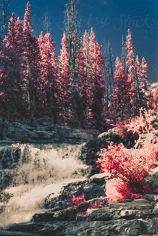 High Uinta Mountains In Infrared by Cameron Whitman for Stocksy United