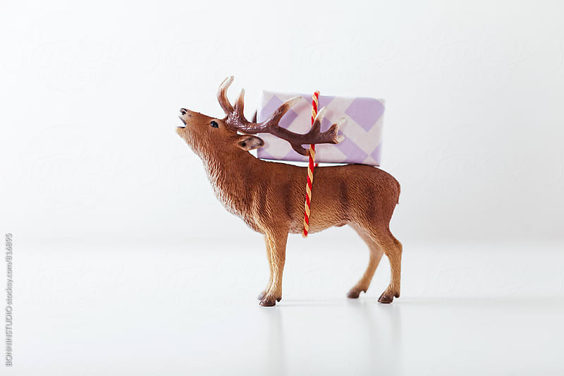Toy reindeer carrying a Christmas gift on white. by BONNINSTUDIO for Stocksy United