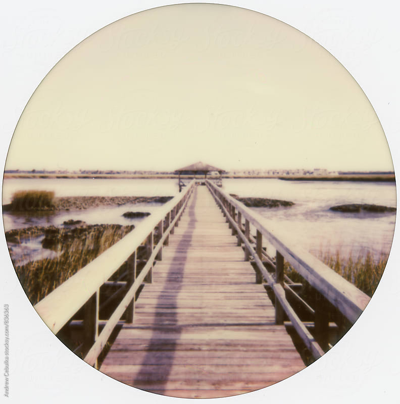 Charleston South Carolina - Polaroid Film by Andrew Cebulka for Stocksy United