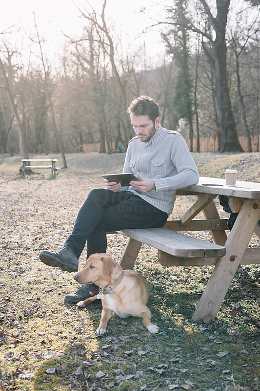 Bearded man using tablet while sitting in park by Alberto Bogo for Stocksy United