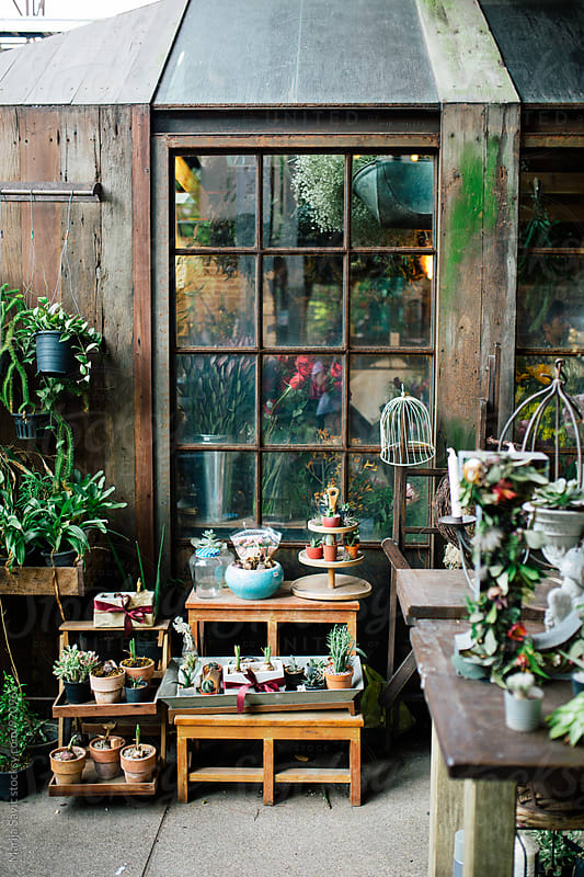 Floral Shop by Marija Savic for Stocksy United