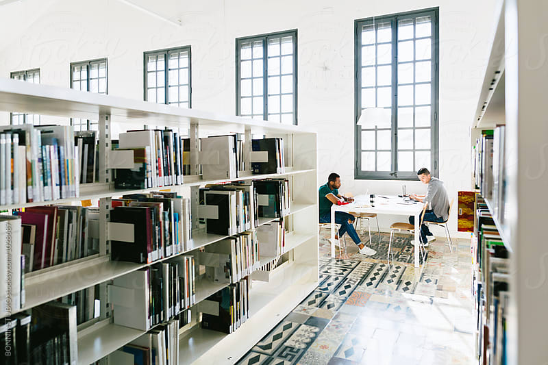 Young university friends studying together in a library. by BONNINSTUDIO for Stocksy United