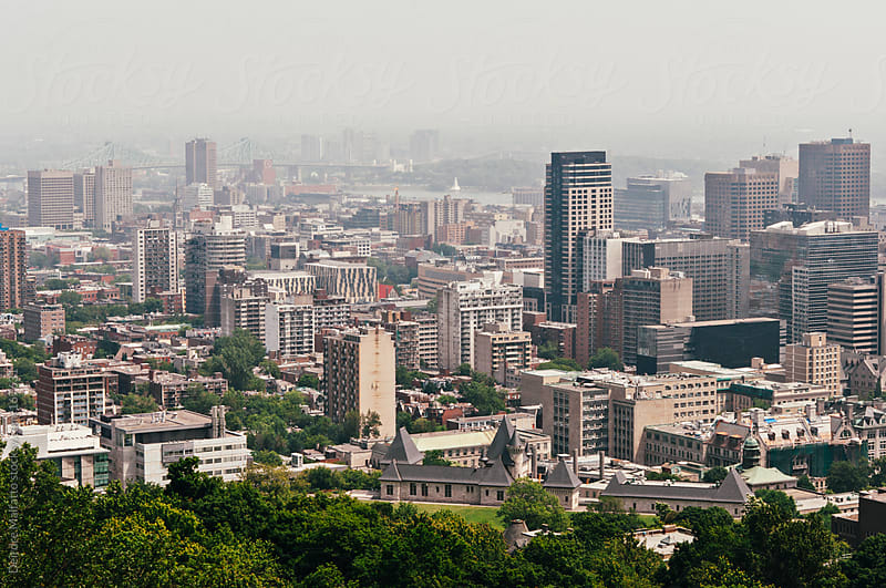 view of Montreal from Mount Royal by Deirdre Malfatto for Stocksy United
