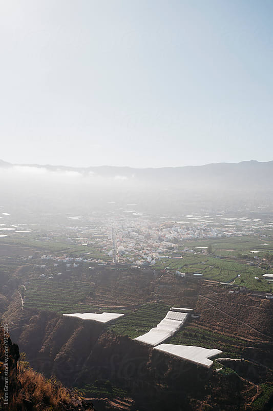 Distant view of banana plantations. La Palma, Canary Islands. by Liam Grant for Stocksy United