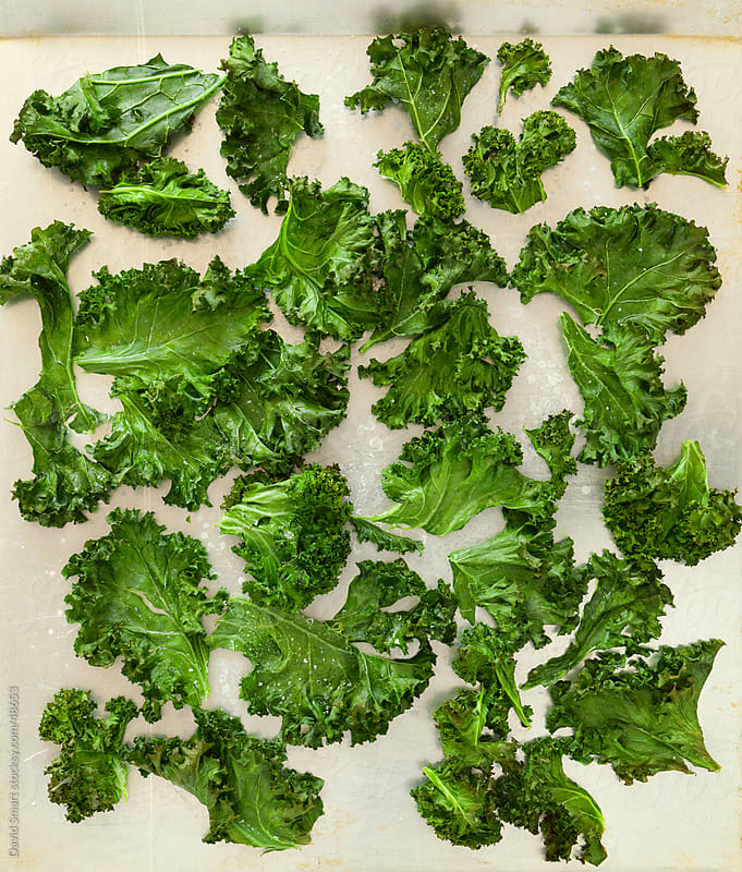 Kale chips on baking sheet fresh from the oven. by David Smart for Stocksy United
