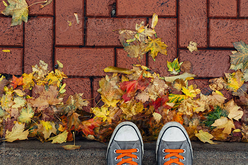 Photographer's shoes and fall leaves on sidewalk by Gabriel (Gabi) Bucataru for Stocksy United