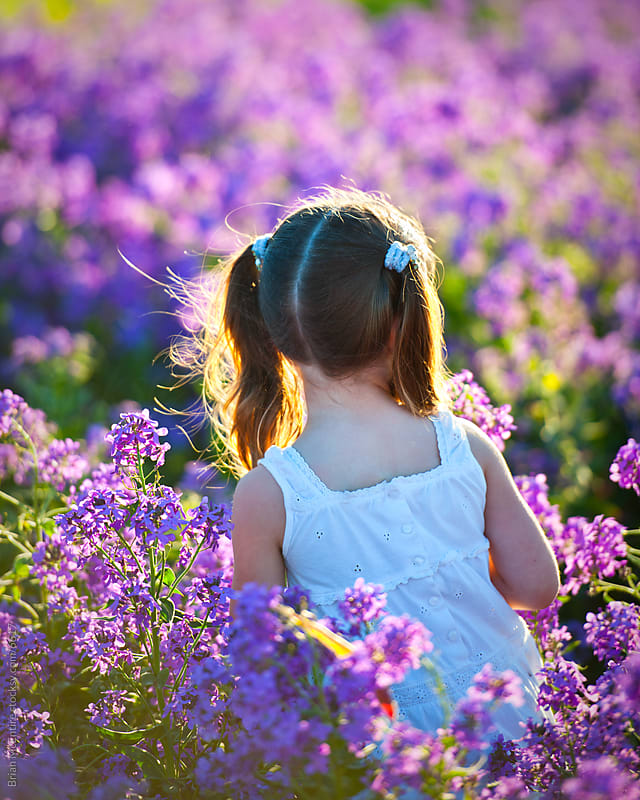 Young girl in white dress, sun kissed, moving through Lavender by Brian McEntire for Stocksy United