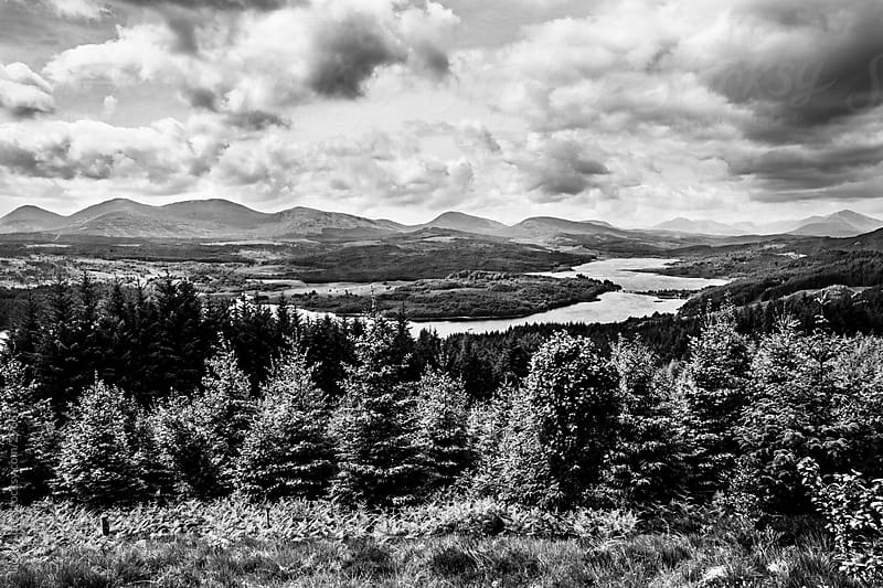Forest and river in Scotland by Lior + Lone for Stocksy United