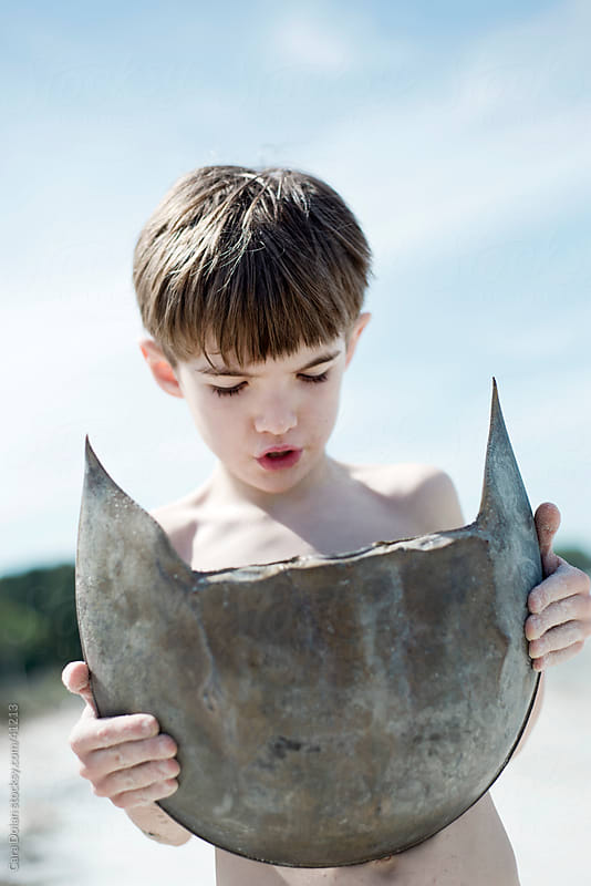 Boy holds large horseshoe crab shell  by Cara Dolan for Stocksy United