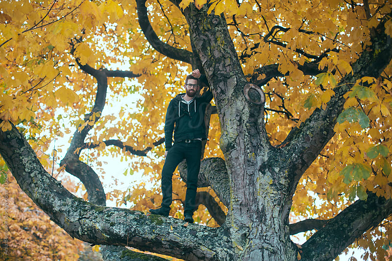A man standing in a tree  by Ania Boniecka for Stocksy United