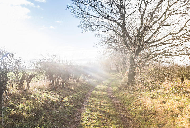 A countryside path by Craig Holmes for Stocksy United