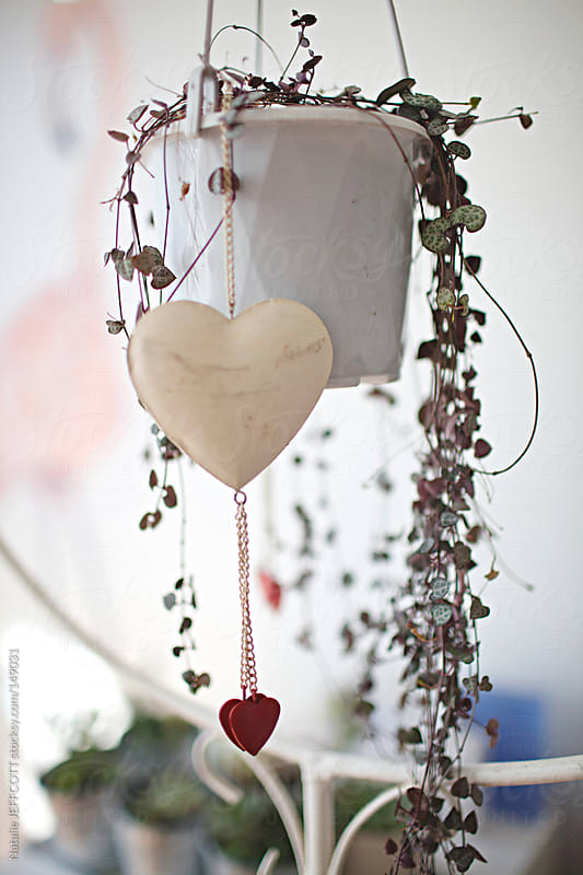 indoor hanging plant with heart decoration by Natalie JEFFCOTT for Stocksy United