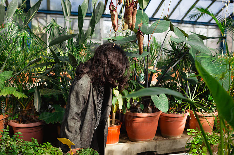 Anonymous image of woman walking amongst pot plants in a greenhouse. by Julia Forsman for Stocksy United